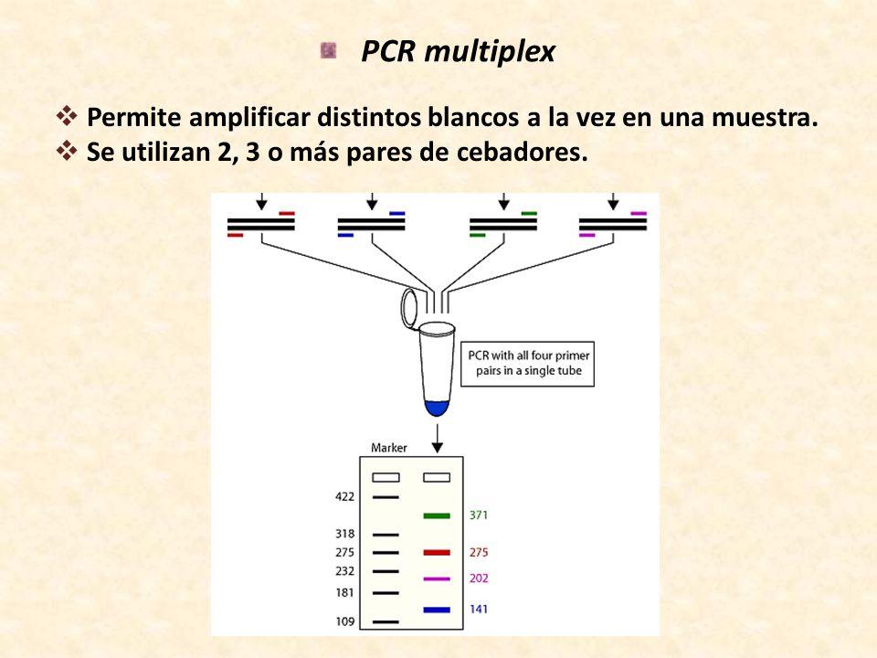 PCR multiplex Permite amplificar distintos blancos a la vez en una muestra.