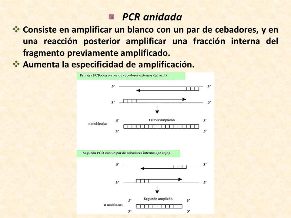 PCR anidada