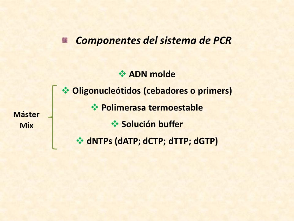 Componentes del sistema de PCR