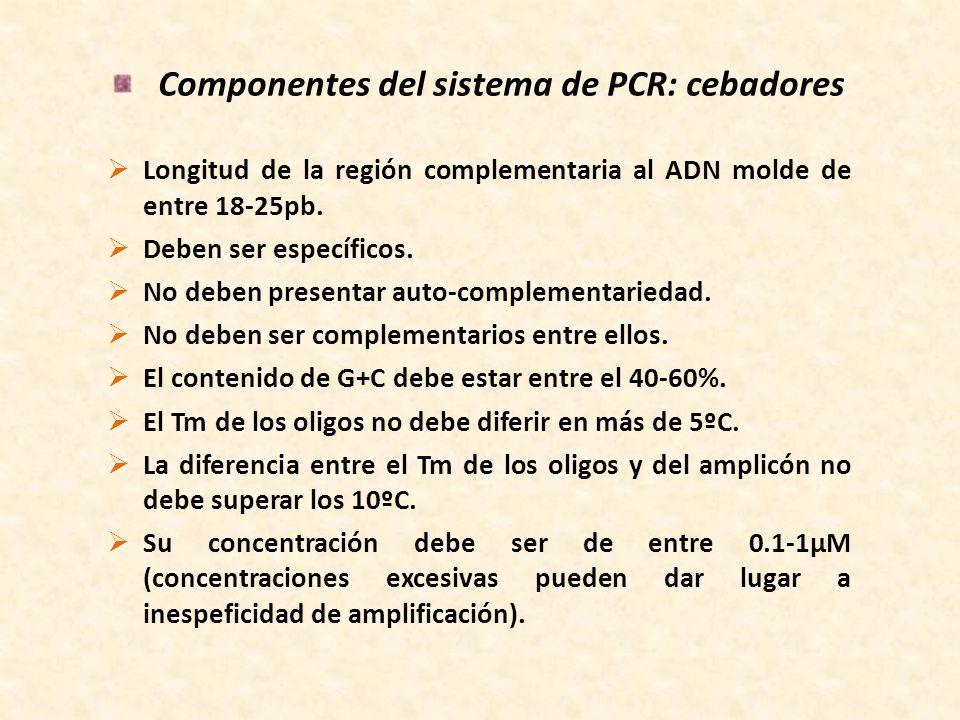 Componentes del sistema de PCR: cebadores