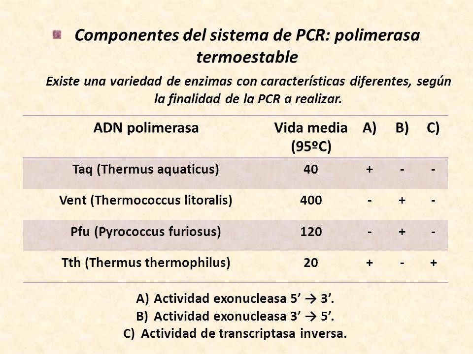 Componentes del sistema de PCR: polimerasa termoestable