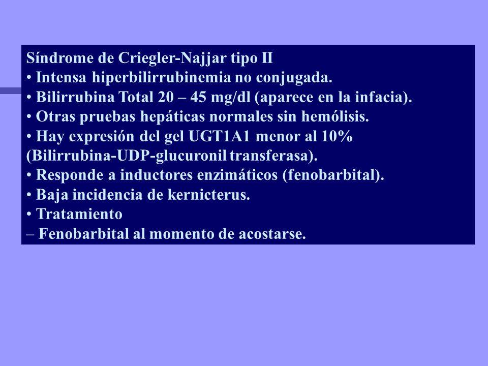 Síndrome de Criegler-Najjar tipo II