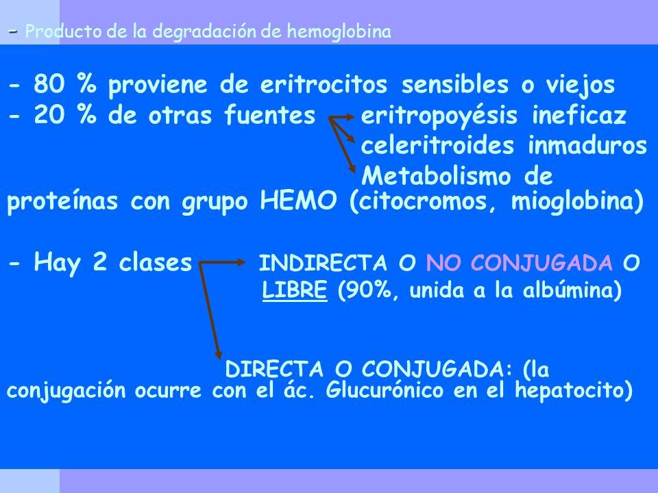 - Producto de la degradación de hemoglobina