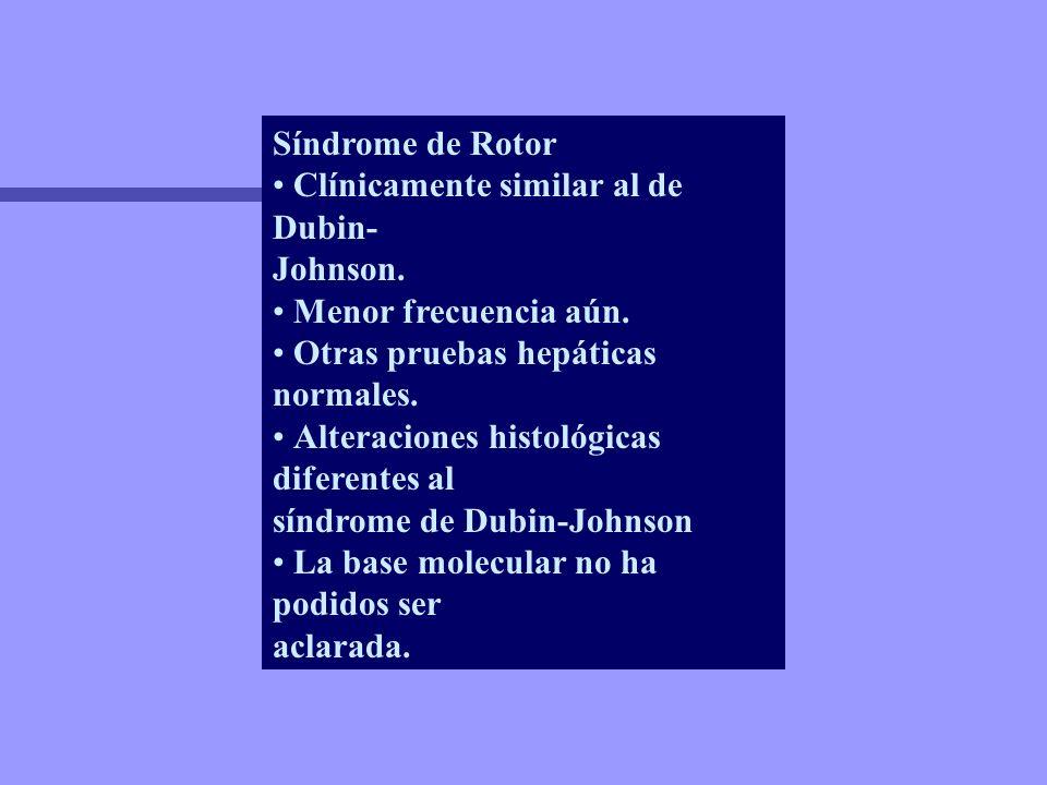 Síndrome de Rotor • Clínicamente similar al de Dubin- Johnson. • Menor frecuencia aún. • Otras pruebas hepáticas normales.