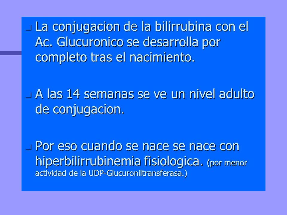 La conjugacion de la bilirrubina con el Ac