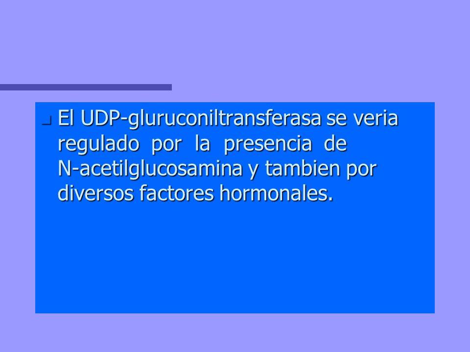 El UDP-gluruconiltransferasa se veria regulado por la presencia de N-acetilglucosamina y tambien por diversos factores hormonales.