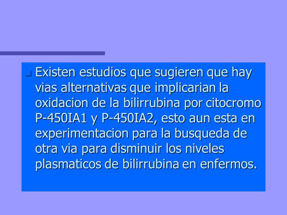 Existen estudios que sugieren que hay vias alternativas que implicarian la oxidacion de la bilirrubina por citocromo P-450IA1 y P-450IA2, esto aun esta en experimentacion para la busqueda de otra via para disminuir los niveles plasmaticos de bilirrubina en enfermos.