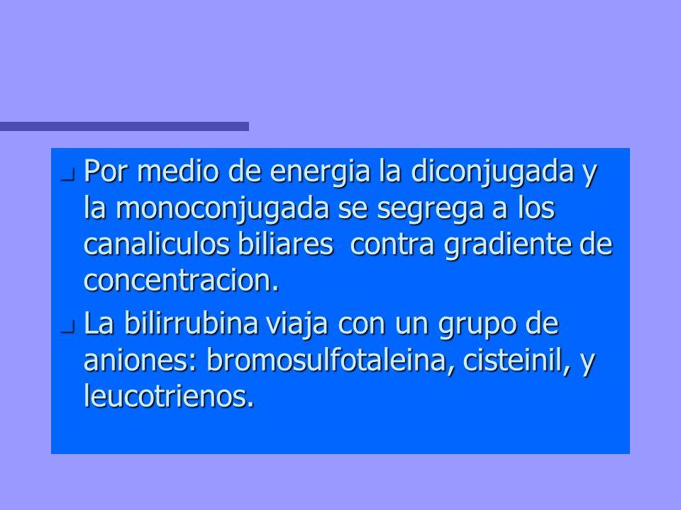 Por medio de energia la diconjugada y la monoconjugada se segrega a los canaliculos biliares contra gradiente de concentracion.