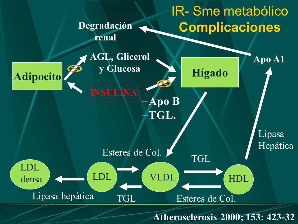 IR- Sme metabólico Complicaciones