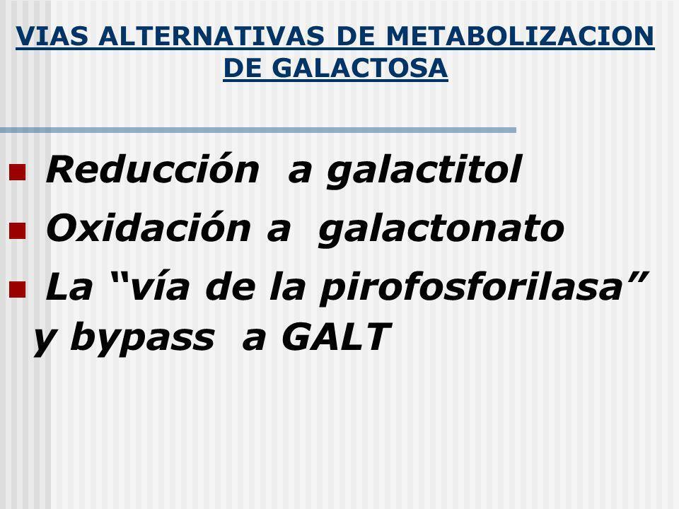 VIAS ALTERNATIVAS DE METABOLIZACION DE GALACTOSA