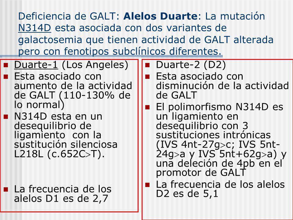 Deficiencia de GALT: Alelos Duarte: La mutación N314D esta asociada con dos variantes de galactosemia que tienen actividad de GALT alterada pero con fenotipos subclínicos diferentes.