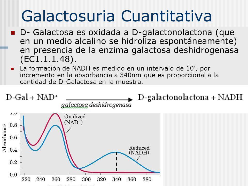 Galactosuria Cuantitativa