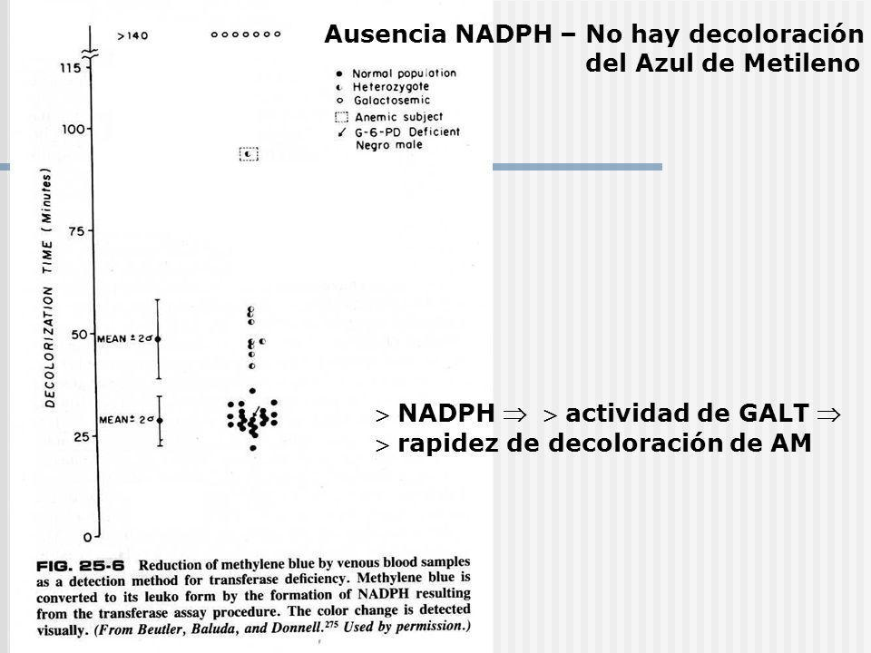 Ausencia NADPH – No hay decoloración del Azul de Metileno