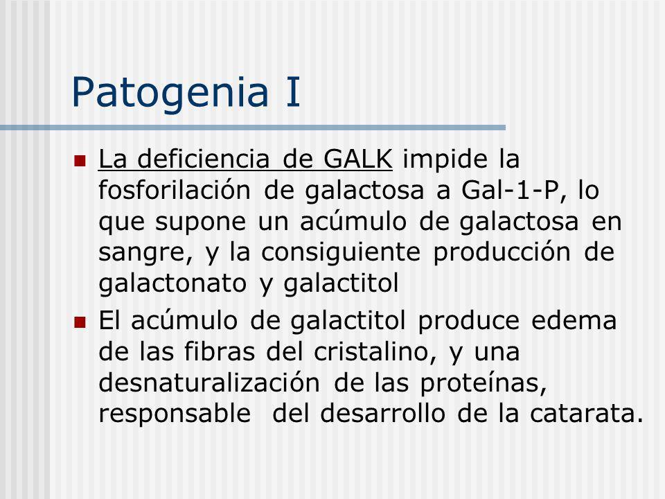 Patogenia I