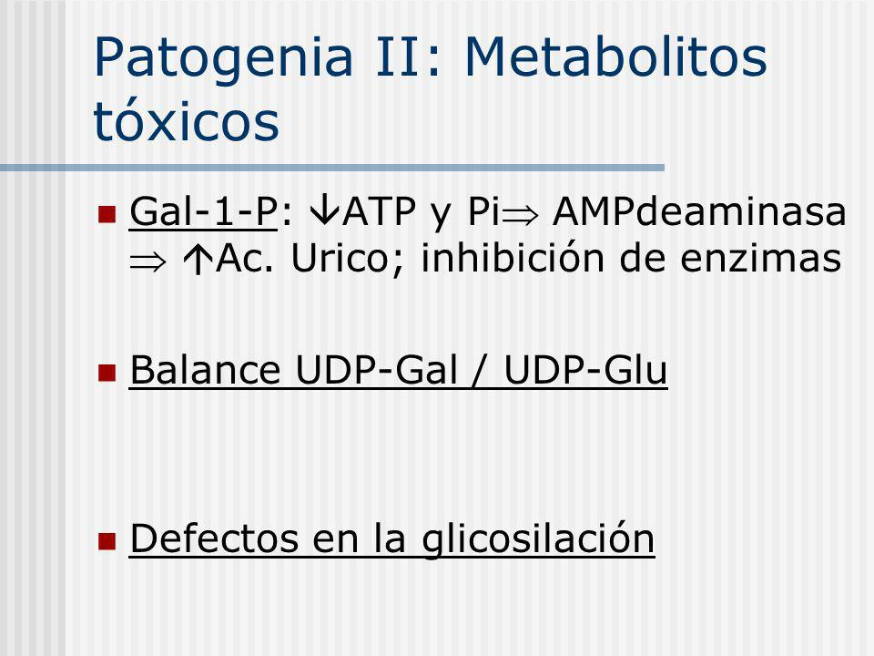 Patogenia II: Metabolitos tóxicos