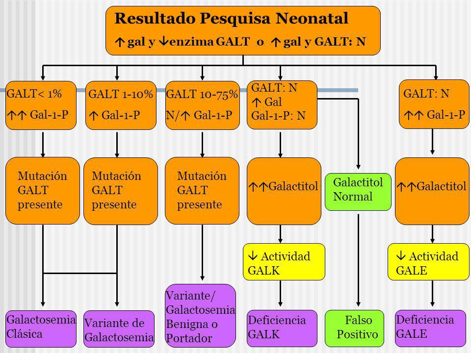 Resultado Pesquisa Neonatal