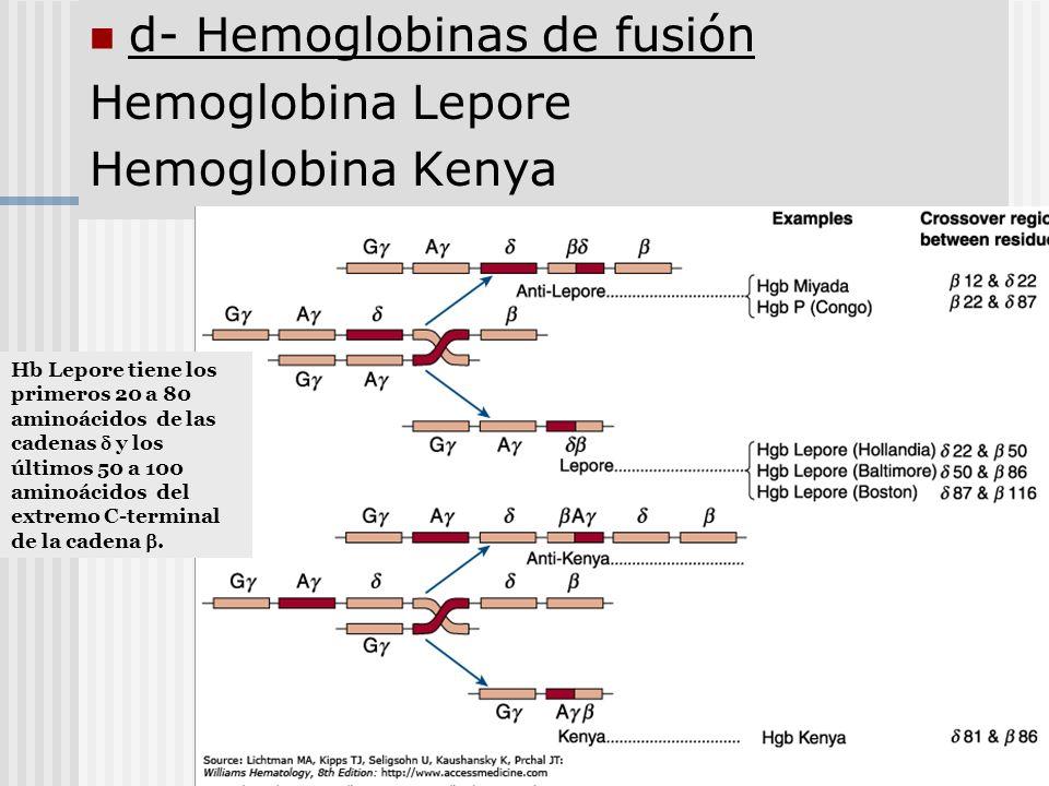 d- Hemoglobinas de fusión Hemoglobina Lepore Hemoglobina Kenya
