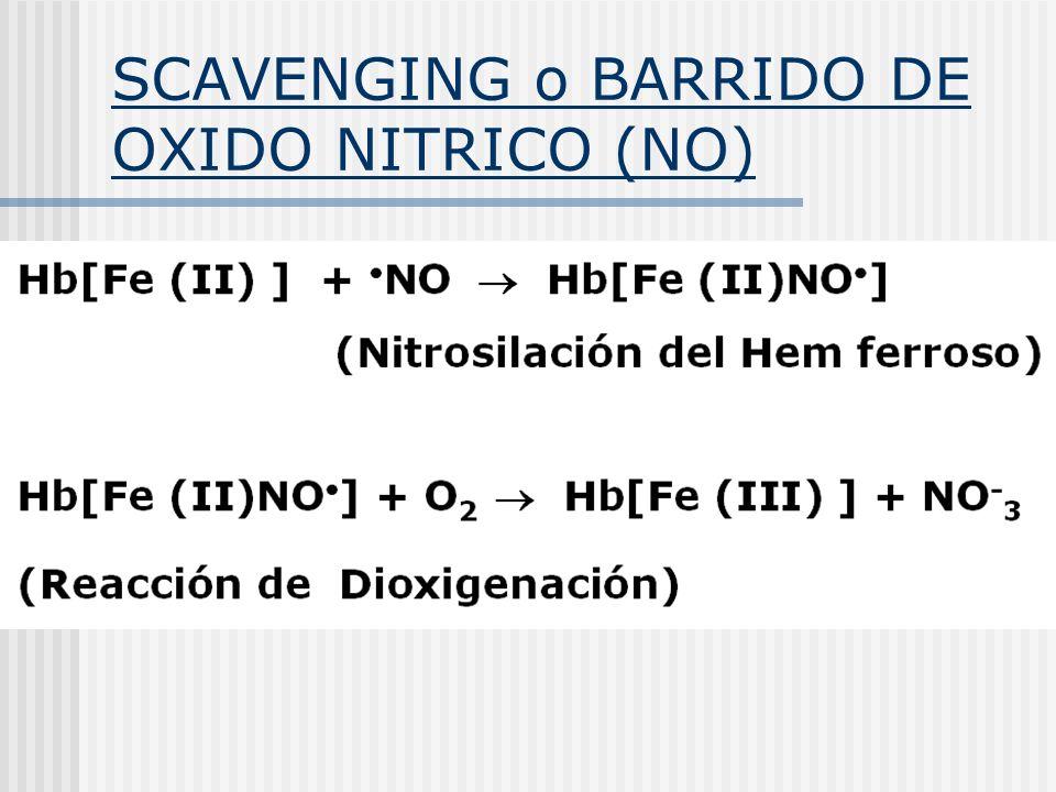 SCAVENGING o BARRIDO DE OXIDO NITRICO (NO)