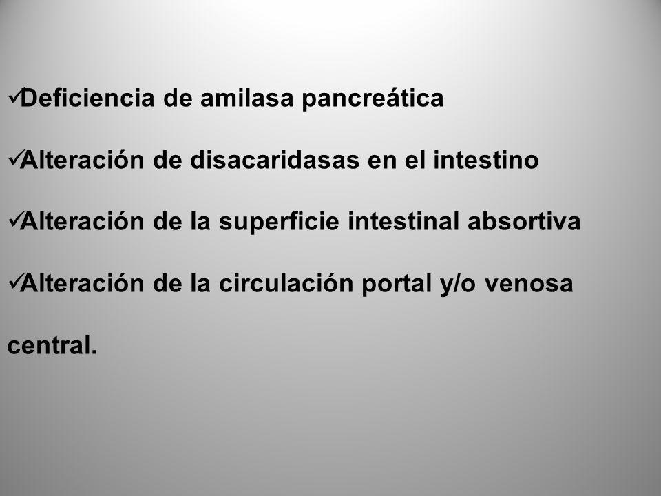 Deficiencia de amilasa pancreática