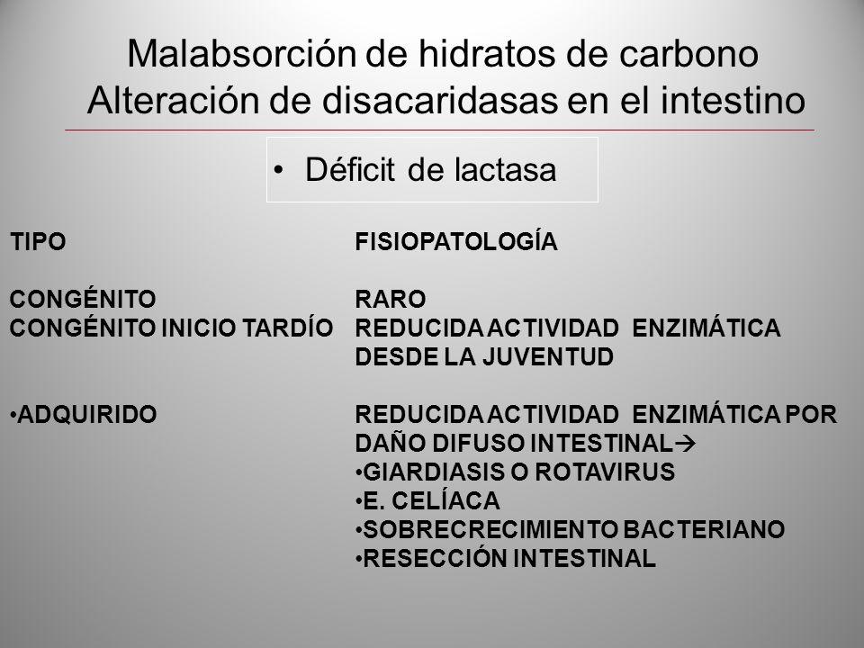 Malabsorción de hidratos de carbono Alteración de disacaridasas en el intestino