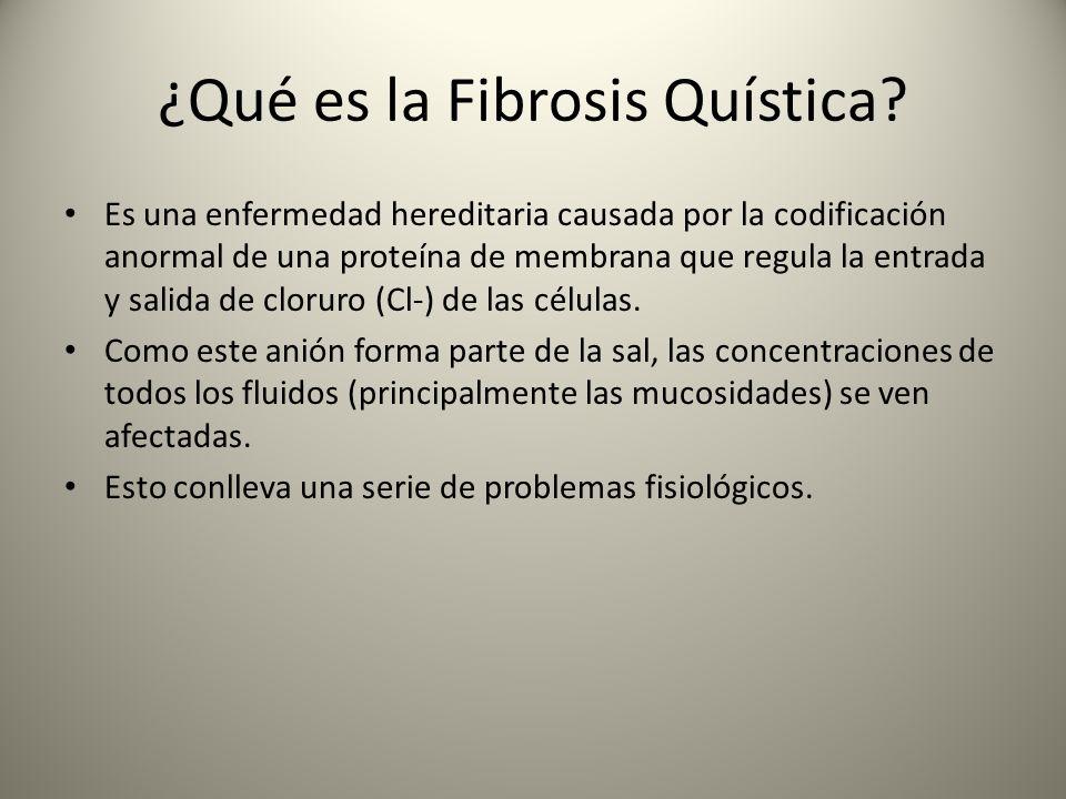 ¿Qué es la Fibrosis Quística