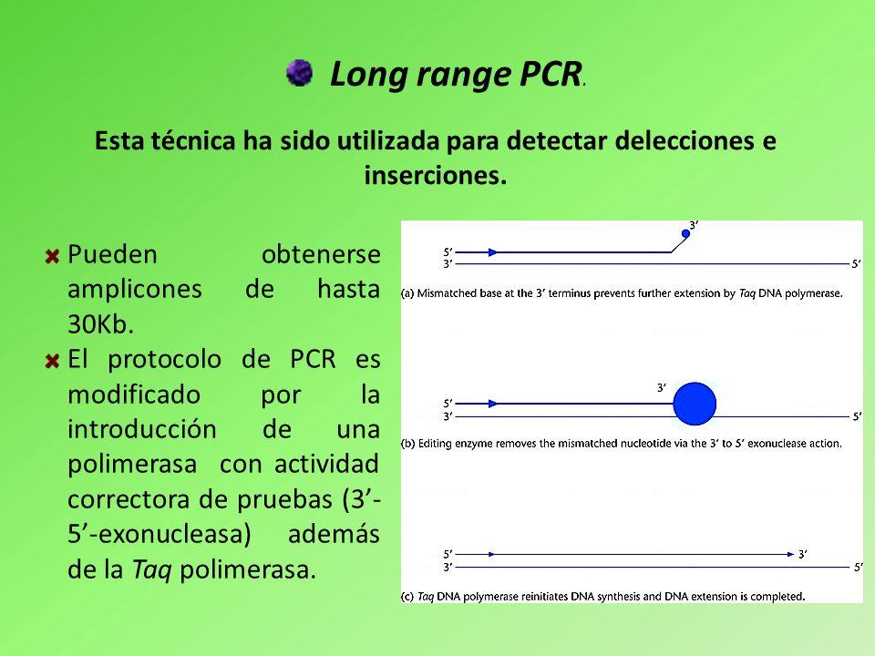 Long range PCR. Esta técnica ha sido utilizada para detectar delecciones e inserciones. Pueden obtenerse amplicones de hasta 30Kb.