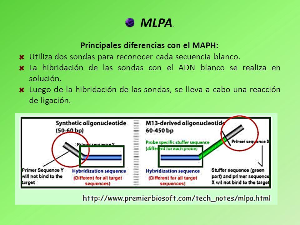 Principales diferencias con el MAPH: