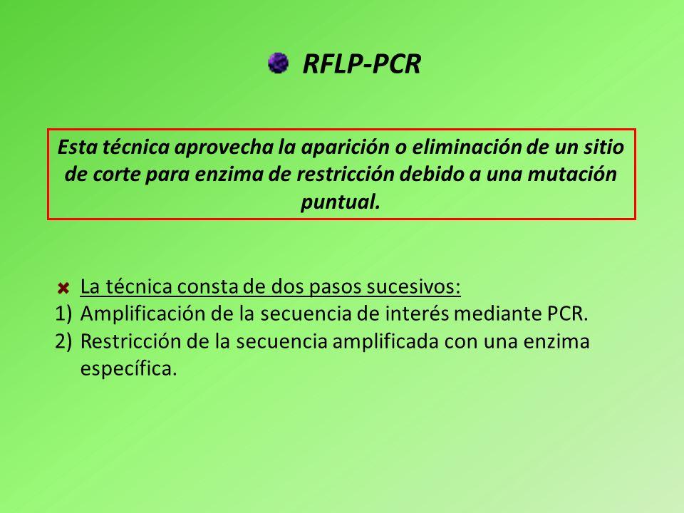 RFLP-PCR Esta técnica aprovecha la aparición o eliminación de un sitio de corte para enzima de restricción debido a una mutación puntual.