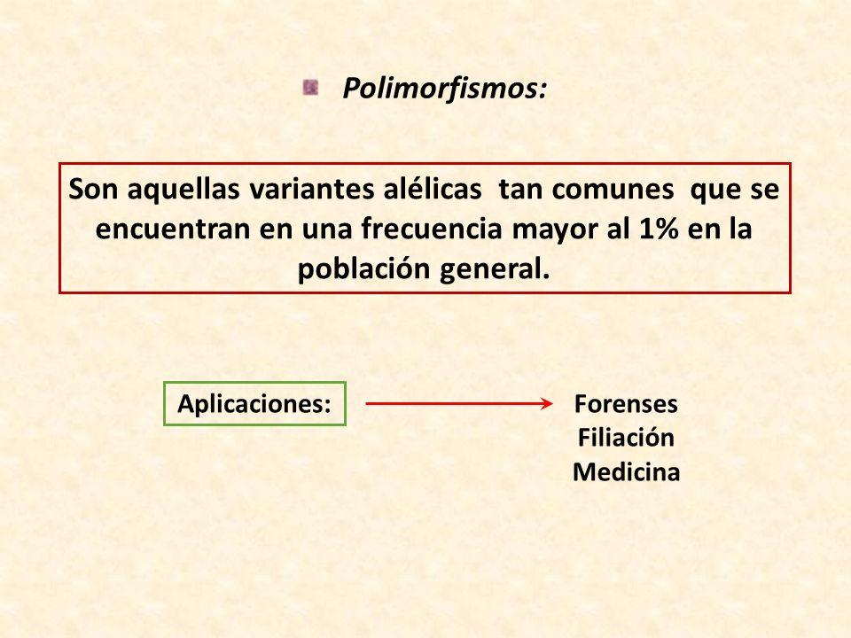 Polimorfismos:Son aquellas variantes alélicas tan comunes que se encuentran en una frecuencia mayor al 1% en la población general.