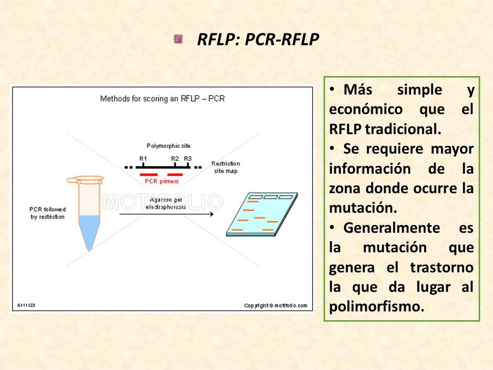 RFLP: PCR-RFLP Más simple y económico que el RFLP tradicional.