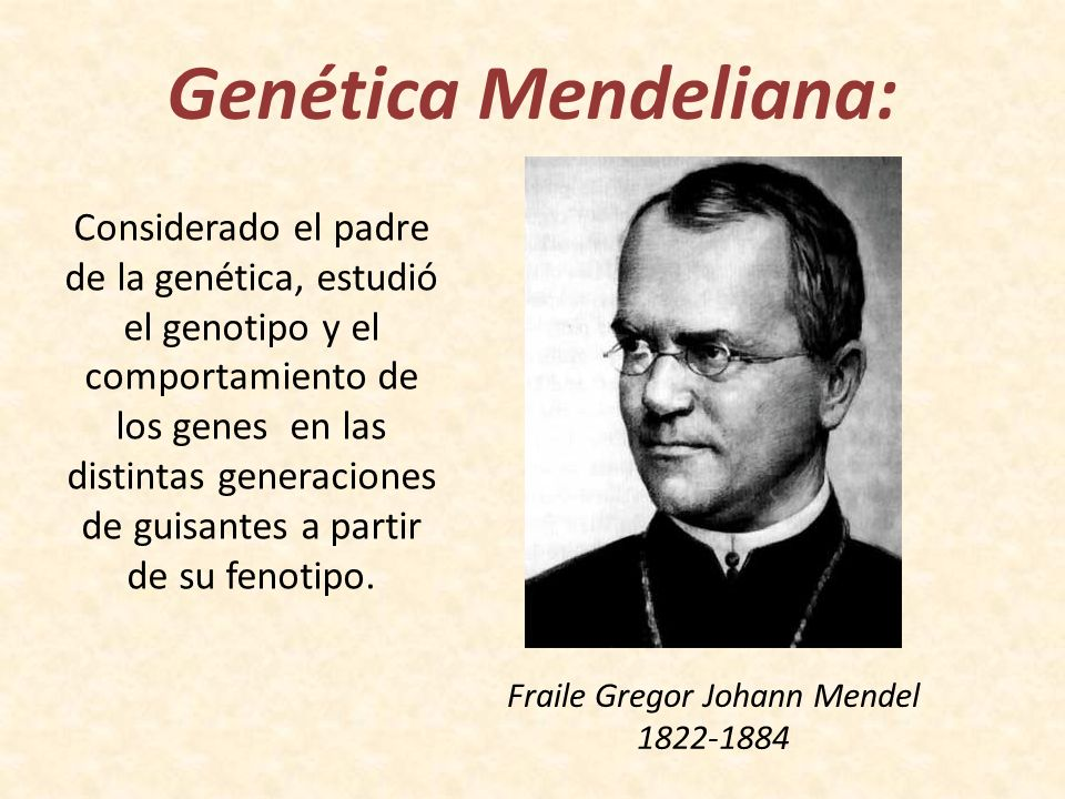 Fraile Gregor Johann Mendel