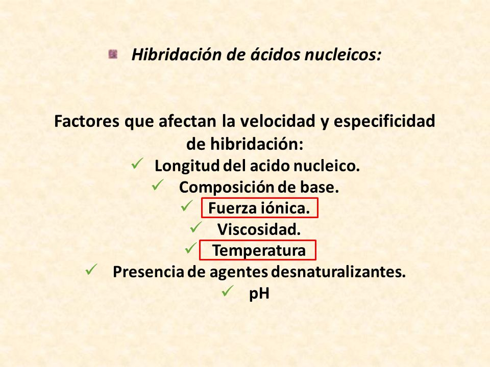 Hibridación de ácidos nucleicos: