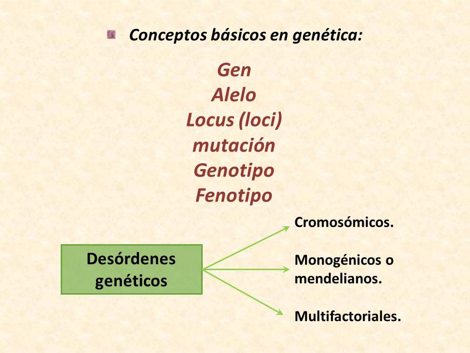 Conceptos básicos en genética: