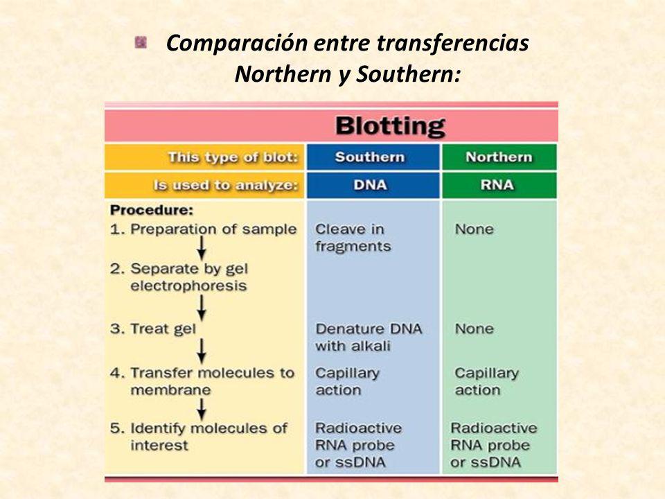Comparación entre transferencias Northern y Southern: