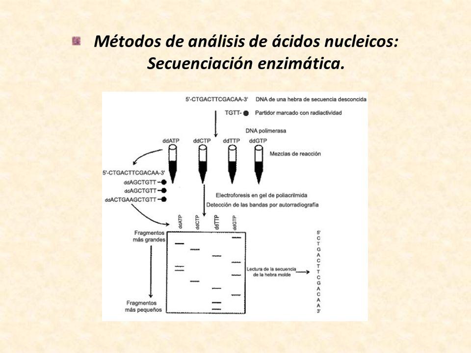 Métodos de análisis de ácidos nucleicos: Secuenciación enzimática.