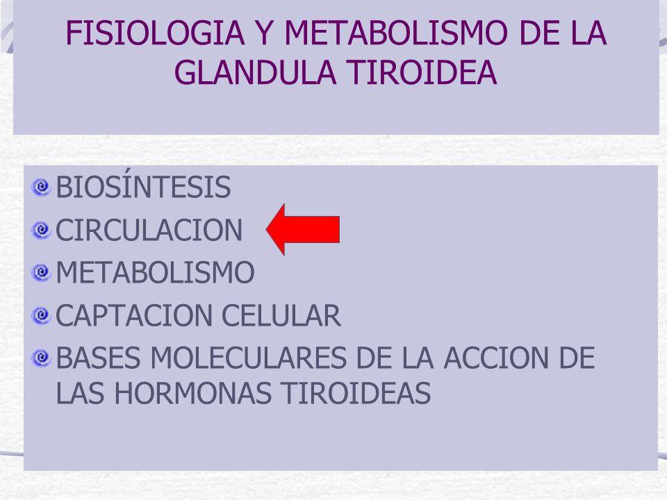 FISIOLOGIA Y METABOLISMO DE LA GLANDULA TIROIDEA