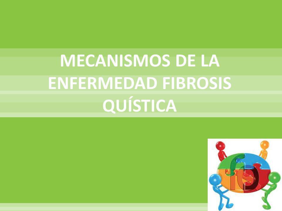 MECANISMOS DE LA ENFERMEDAD FIBROSIS QUÍSTICA