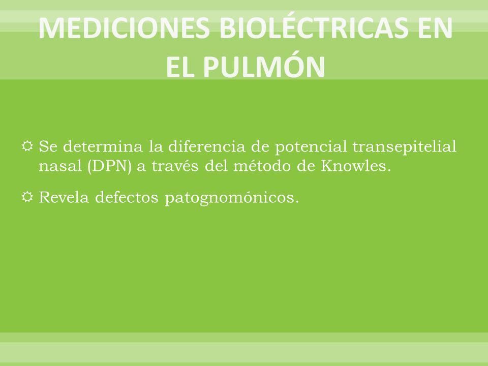 MEDICIONES BIOLÉCTRICAS EN EL PULMÓN