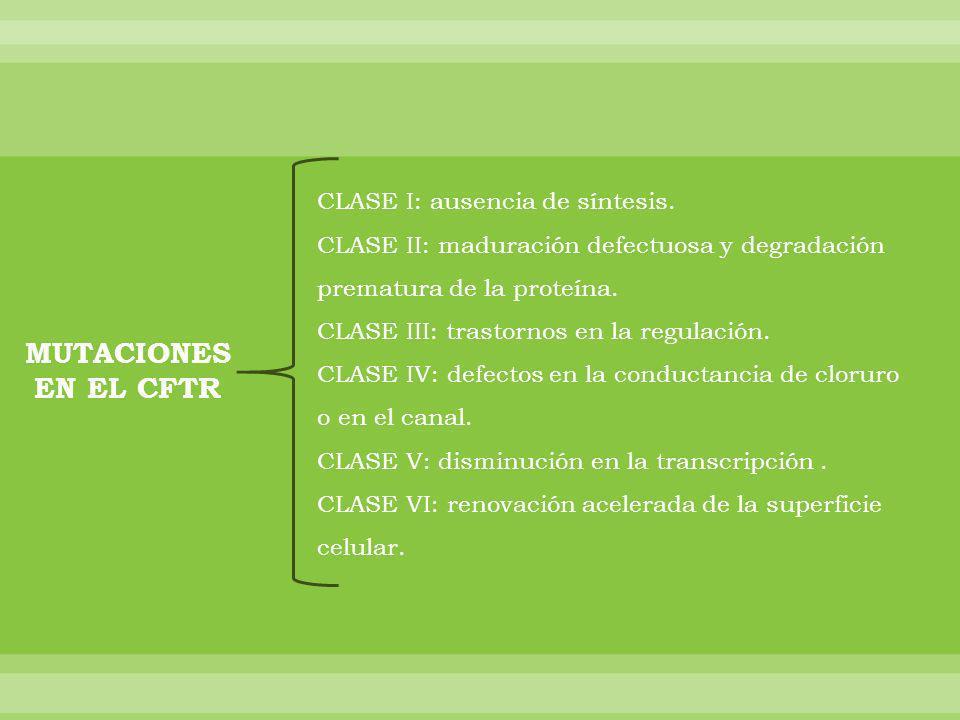 MUTACIONES EN EL CFTR CLASE I: ausencia de síntesis.