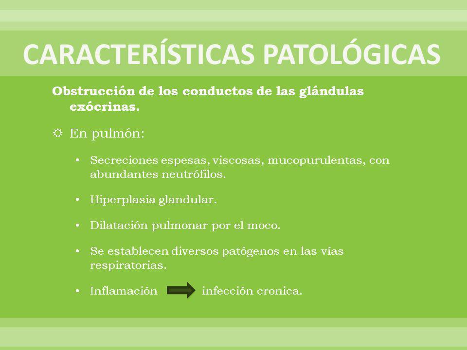CARACTERÍSTICAS PATOLÓGICAS