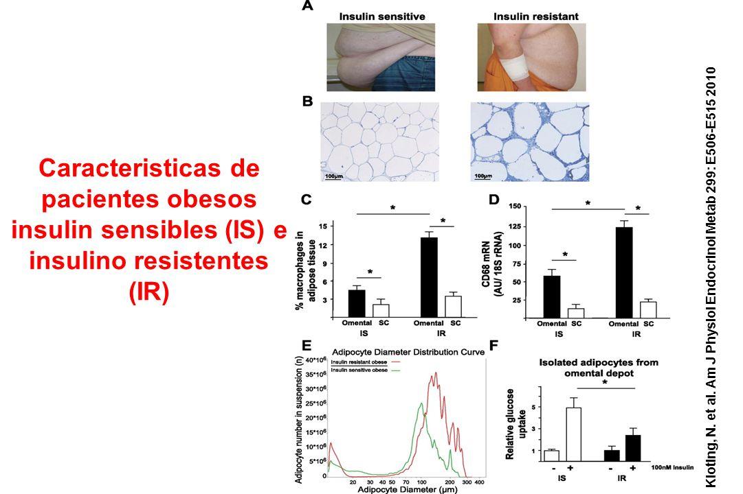 Caracteristicas de pacientes obesos insulin sensibles (IS) e insulino resistentes (IR)