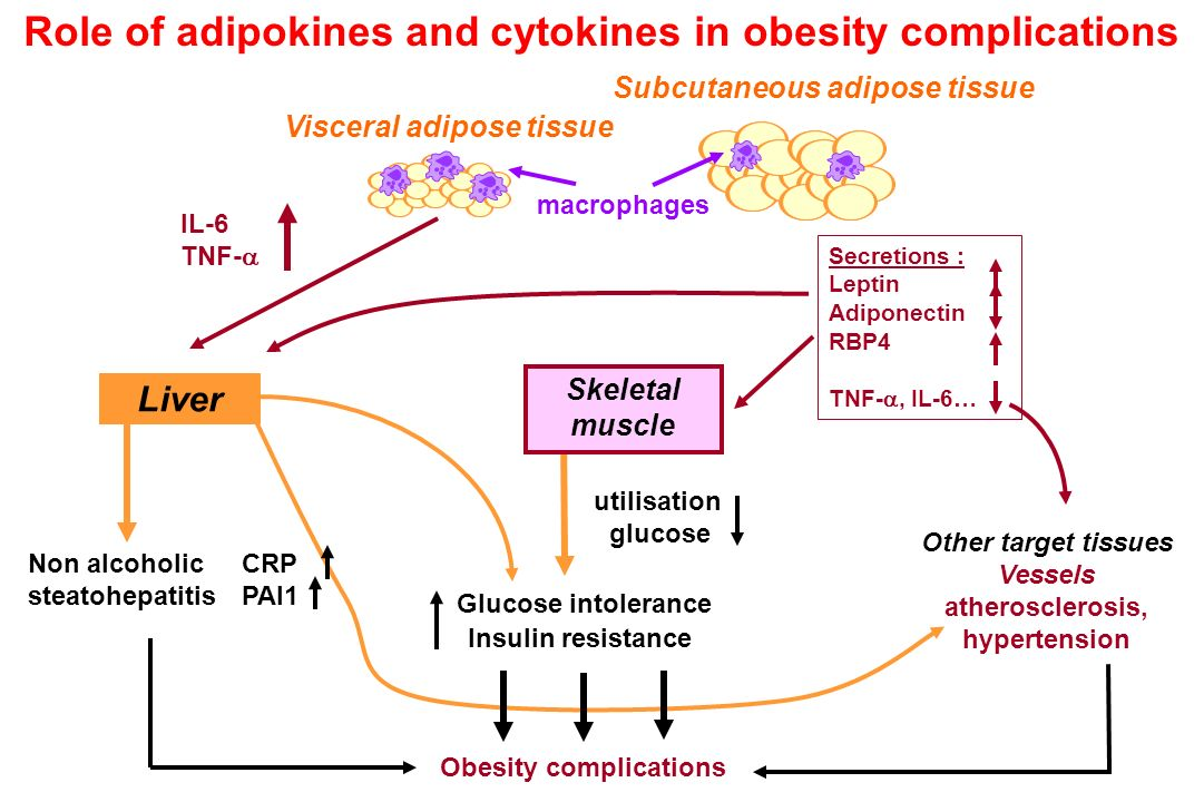 Role of adipokines and cytokines in obesity complications