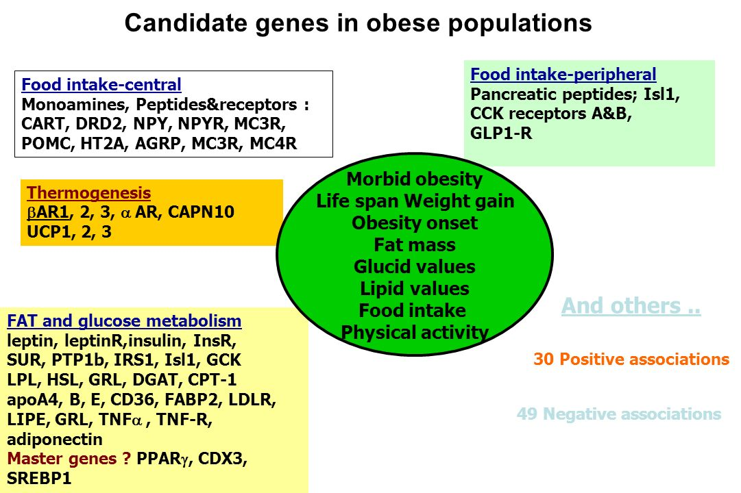 Candidate genes in obese populations