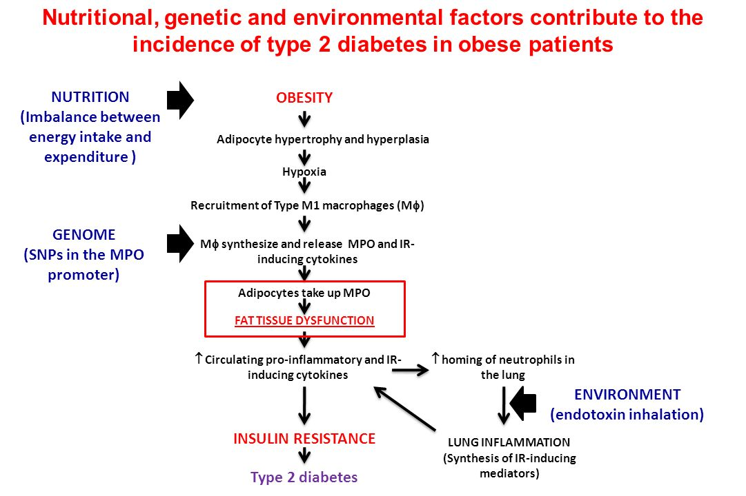 Nutritional, genetic and environmental factors contribute to the incidence of type 2 diabetes in obese patients