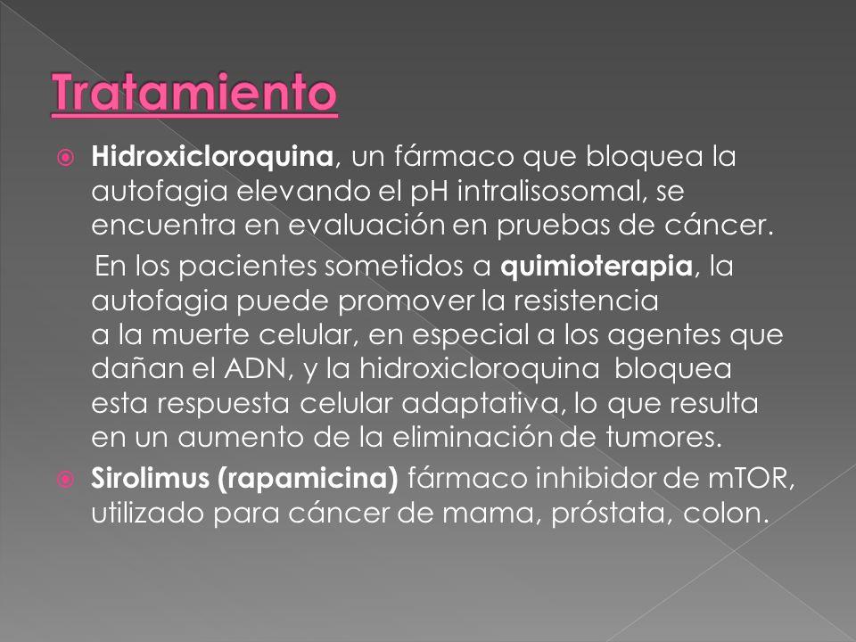 TratamientoHidroxicloroquina, un fármaco que bloquea la autofagia elevando el pH intralisosomal, se encuentra en evaluación en pruebas de cáncer.