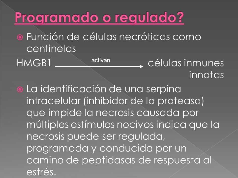 Programado o regulado Función de células necróticas como centinelas