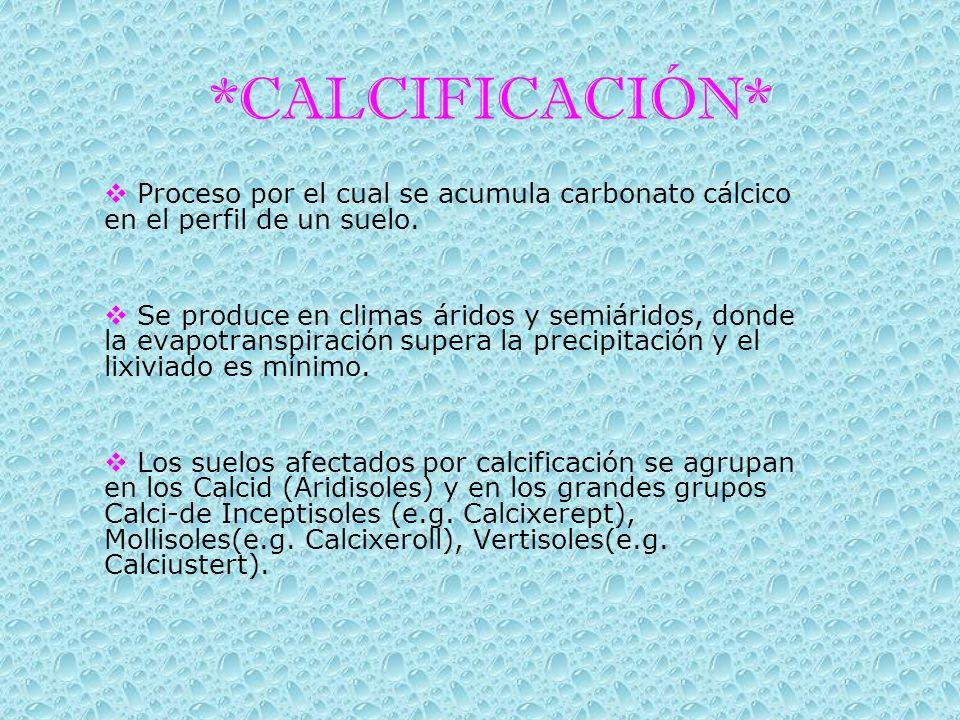 *CALCIFICACIÓN* Proceso por el cual se acumula carbonato cálcico en el perfil de un suelo.