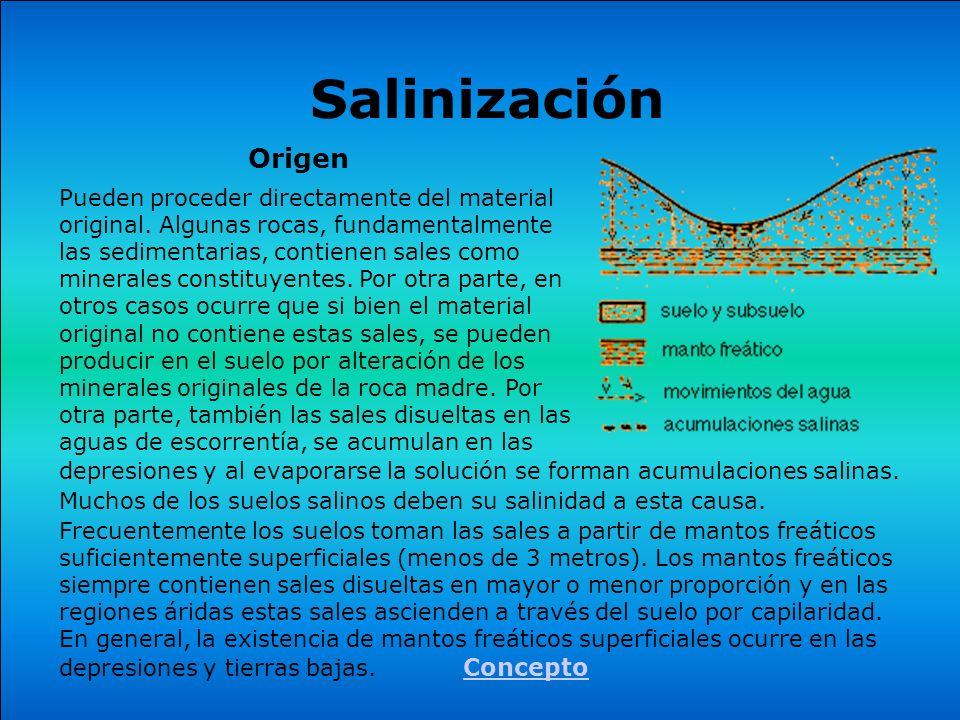 Salinización Origen.