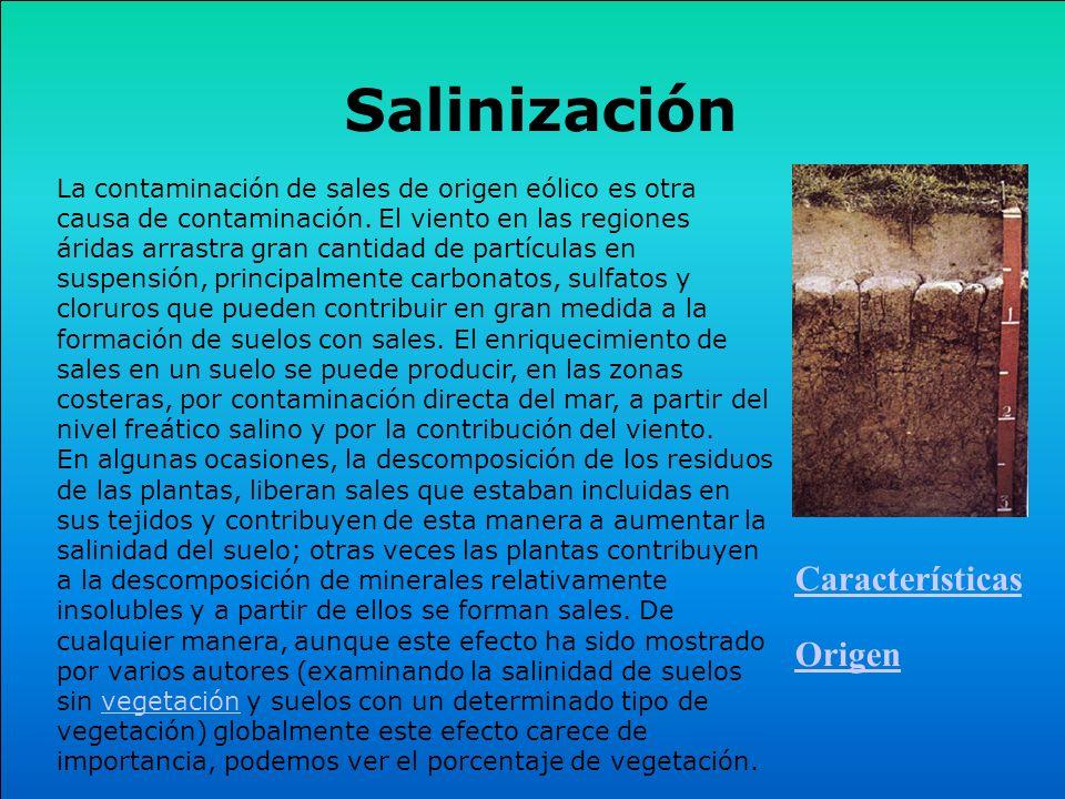 Salinización Características Origen