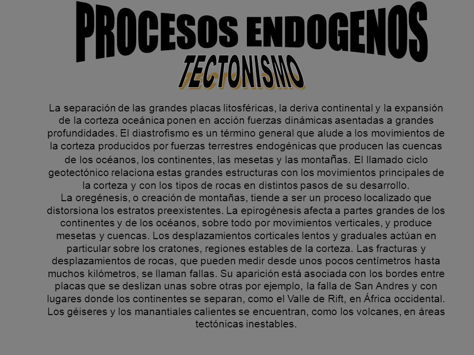 PROCESOS ENDOGENOS TECTONISMO